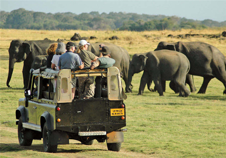 Jeep-Safari-in-Yala-National-Park